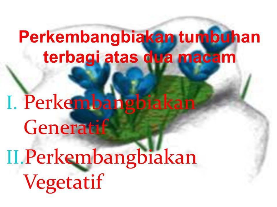 Perkembangbiakan tumbuhan terbagi atas dua macam I.