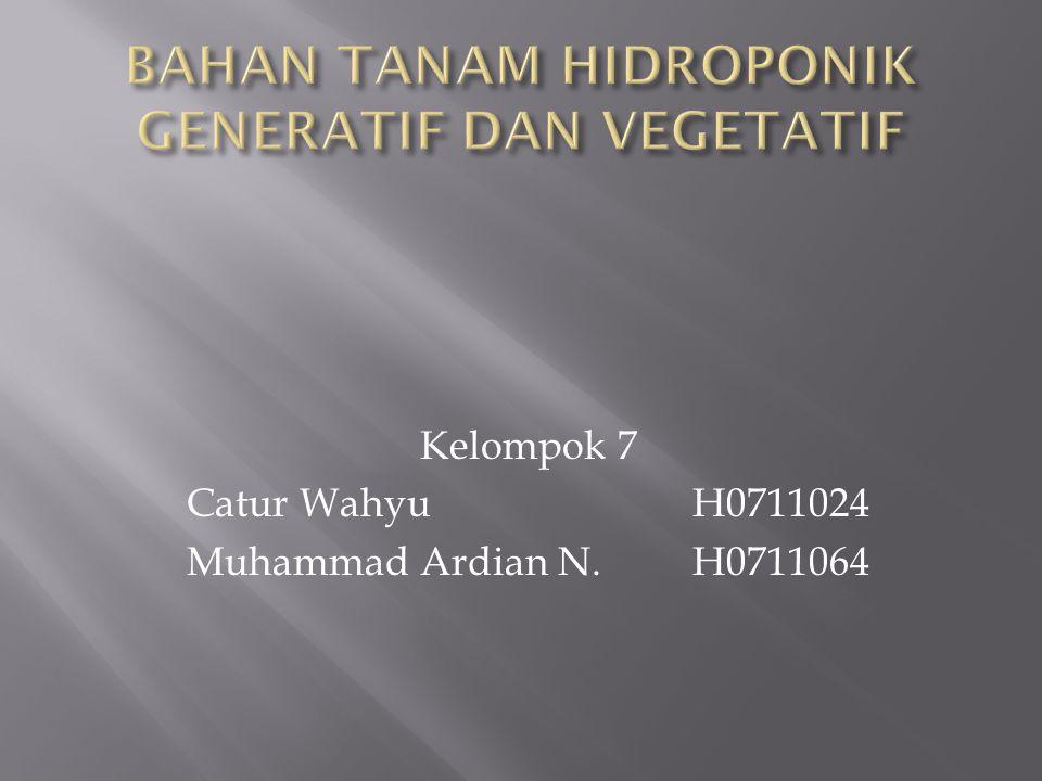 Kelompok 7 Catur Wahyu H0711024 Muhammad Ardian N.H0711064