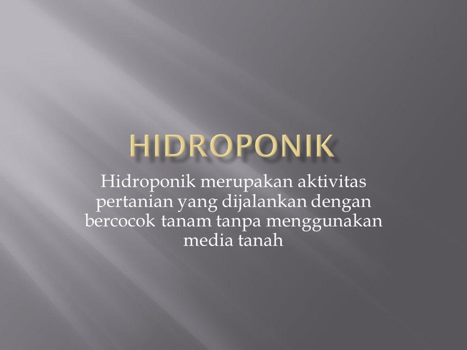 Hidroponik merupakan aktivitas pertanian yang dijalankan dengan bercocok tanam tanpa menggunakan media tanah