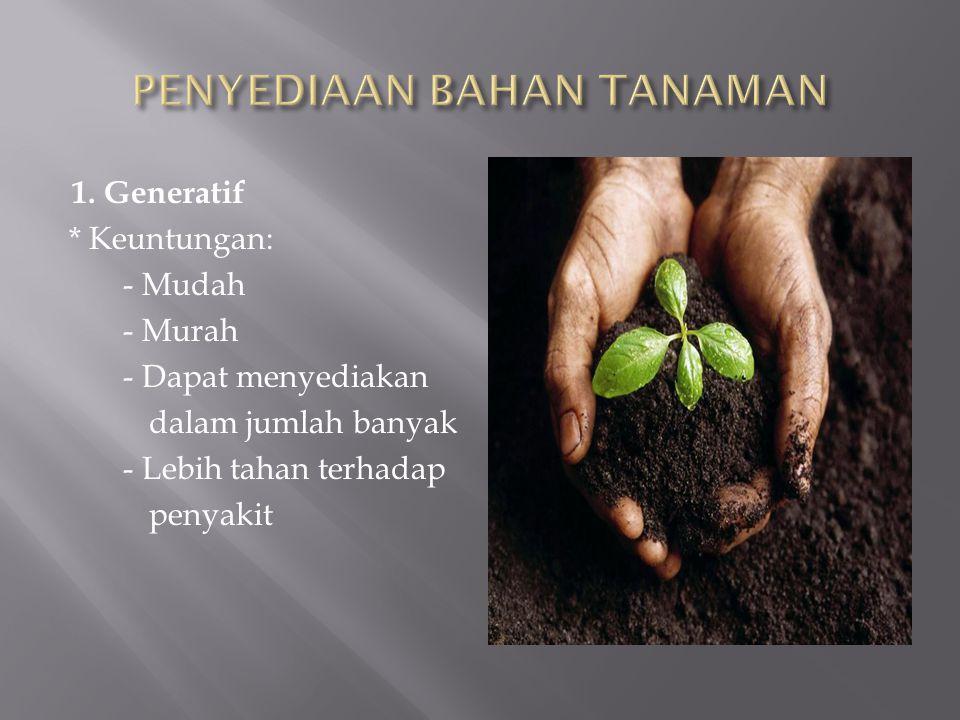 1. Generatif * Keuntungan: - Mudah - Murah - Dapat menyediakan dalam jumlah banyak - Lebih tahan terhadap penyakit