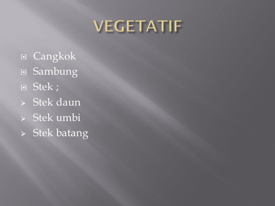  Cangkok  Sambung  Stek ;  Stek daun  Stek umbi  Stek batang