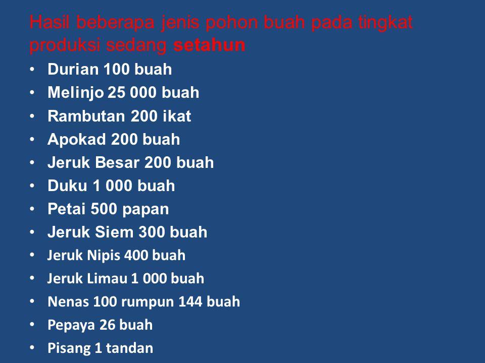 Hasil beberapa jenis pohon buah pada tingkat produksi sedang setahun Durian 100 buah Melinjo 25 000 buah Rambutan 200 ikat Apokad 200 buah Jeruk Besar