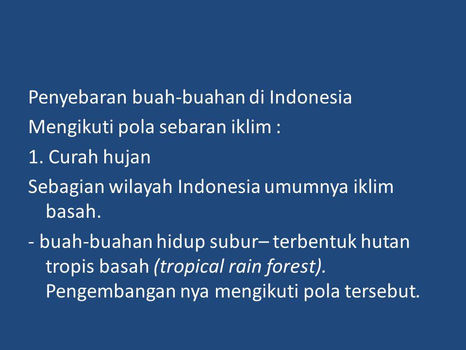 Penyebaran buah-buahan di Indonesia Mengikuti pola sebaran iklim : 1. Curah hujan Sebagian wilayah Indonesia umumnya iklim basah. - buah-buahan hidup