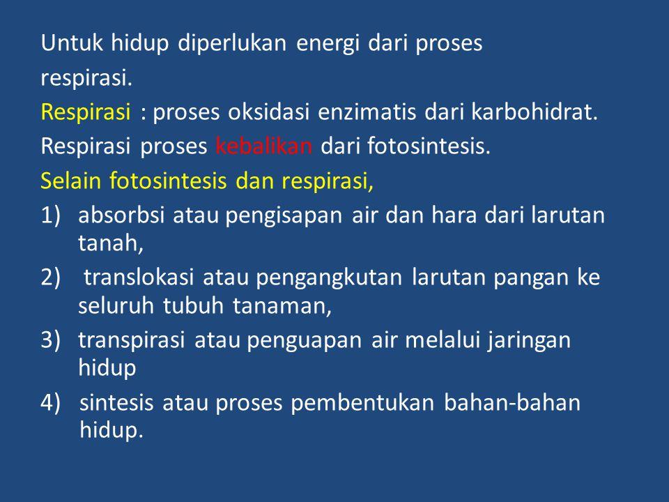 Untuk hidup diperlukan energi dari proses respirasi. Respirasi : proses oksidasi enzimatis dari karbohidrat. Respirasi proses kebalikan dari fotosinte