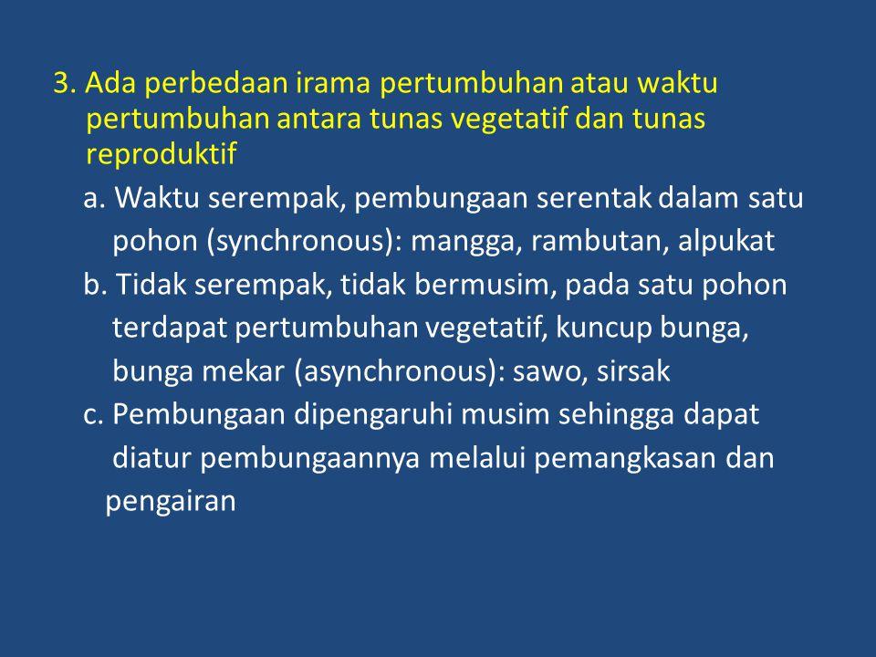 3. Ada perbedaan irama pertumbuhan atau waktu pertumbuhan antara tunas vegetatif dan tunas reproduktif a. Waktu serempak, pembungaan serentak dalam sa