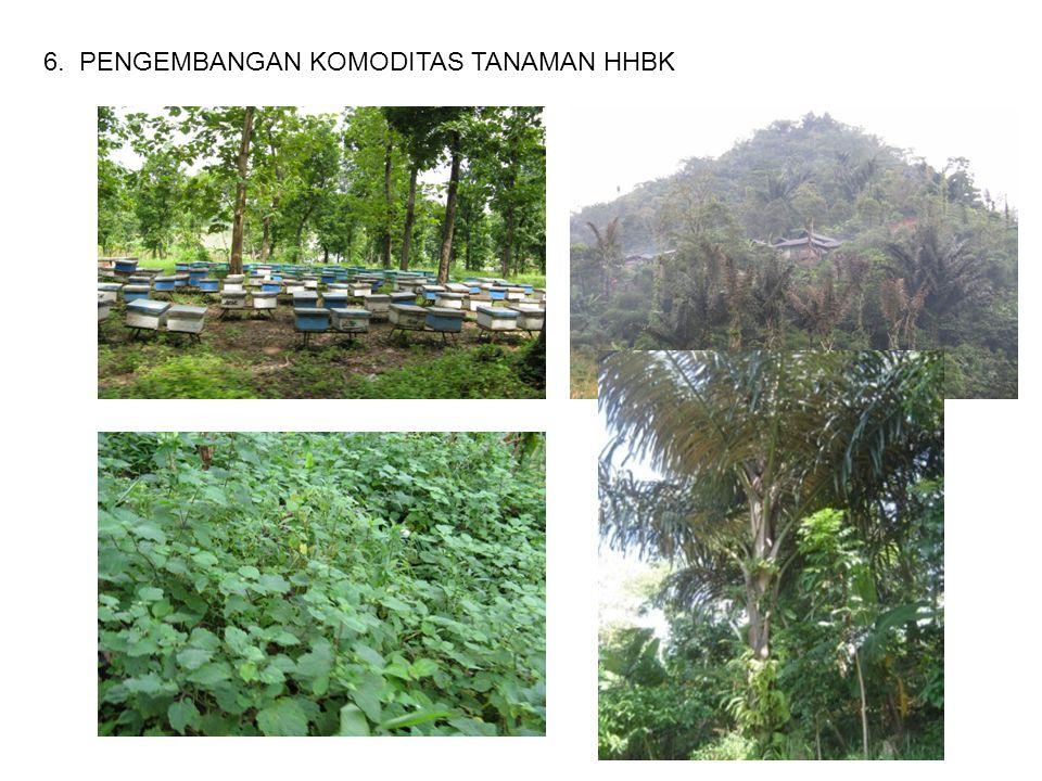 6. PENGEMBANGAN KOMODITAS TANAMAN HHBK