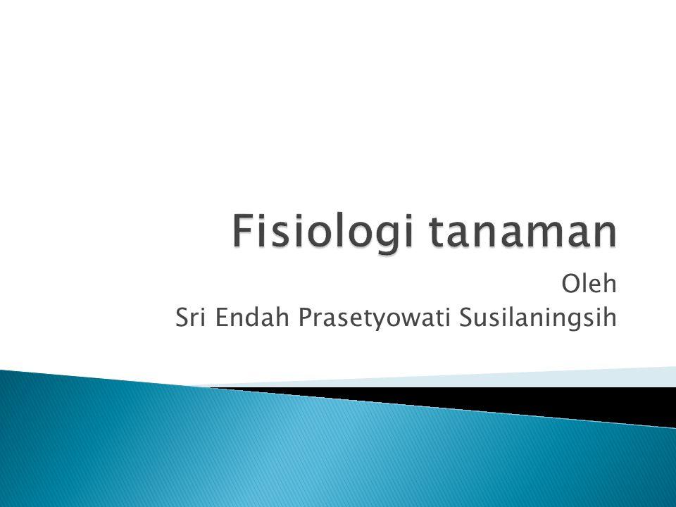 Oleh Sri Endah Prasetyowati Susilaningsih