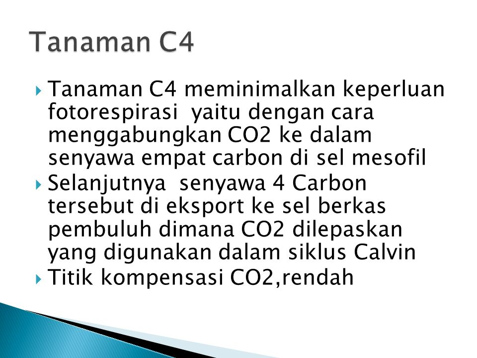  Tanaman C4 meminimalkan keperluan fotorespirasi yaitu dengan cara menggabungkan CO2 ke dalam senyawa empat carbon di sel mesofil  Selanjutnya senya
