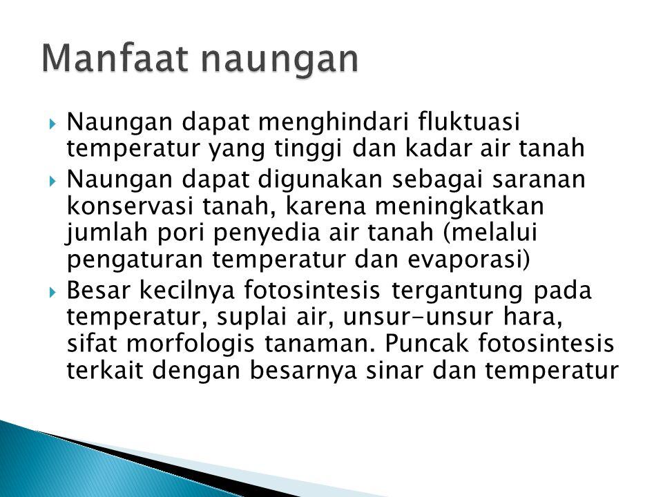  Naungan dapat menghindari fluktuasi temperatur yang tinggi dan kadar air tanah  Naungan dapat digunakan sebagai saranan konservasi tanah, karena me