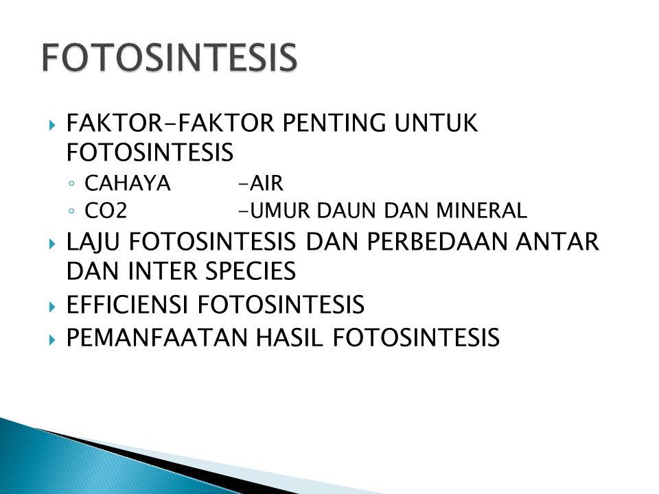  FAKTOR-FAKTOR PENTING UNTUK FOTOSINTESIS ◦ CAHAYA-AIR ◦ CO2-UMUR DAUN DAN MINERAL  LAJU FOTOSINTESIS DAN PERBEDAAN ANTAR DAN INTER SPECIES  EFFICIENSI FOTOSINTESIS  PEMANFAATAN HASIL FOTOSINTESIS
