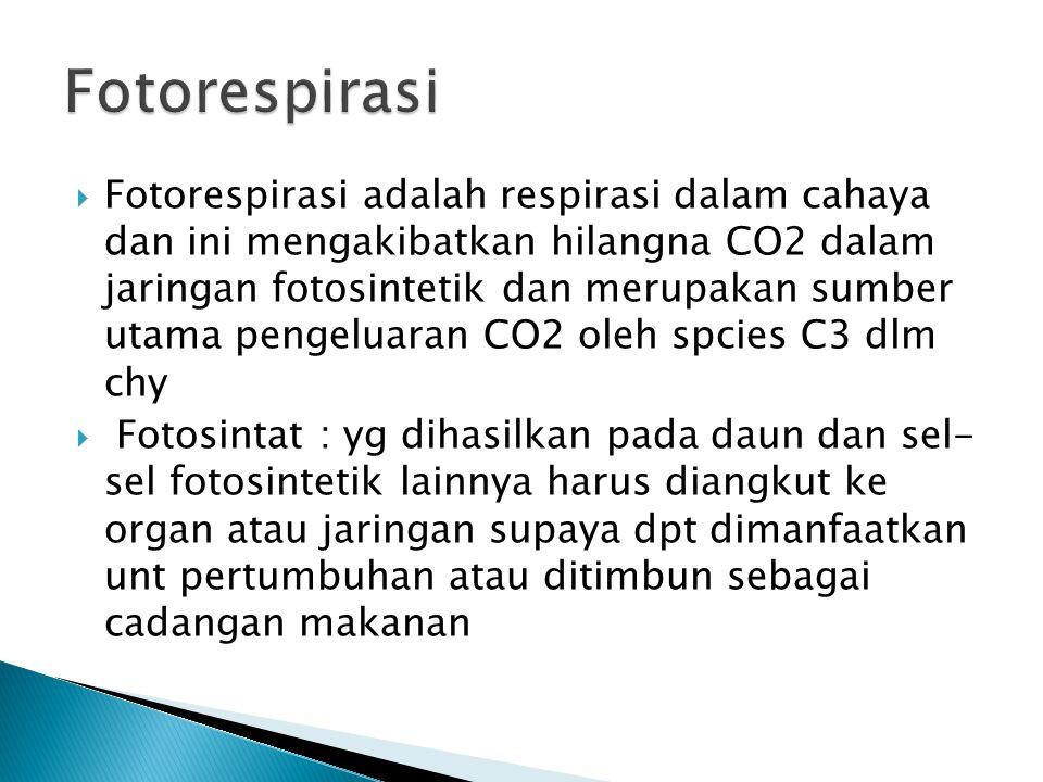  Fotorespirasi adalah respirasi dalam cahaya dan ini mengakibatkan hilangna CO2 dalam jaringan fotosintetik dan merupakan sumber utama pengeluaran CO