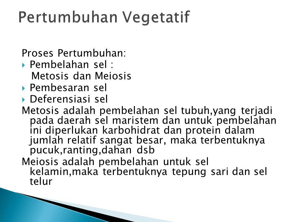 Proses Pertumbuhan:  Pembelahan sel : Metosis dan Meiosis  Pembesaran sel  Deferensiasi sel Metosis adalah pembelahan sel tubuh,yang terjadi pada daerah sel maristem dan untuk pembelahan ini diperlukan karbohidrat dan protein dalam jumlah relatif sangat besar, maka terbentuknya pucuk,ranting,dahan dsb Meiosis adalah pembelahan untuk sel kelamin,maka terbentuknya tepung sari dan sel telur