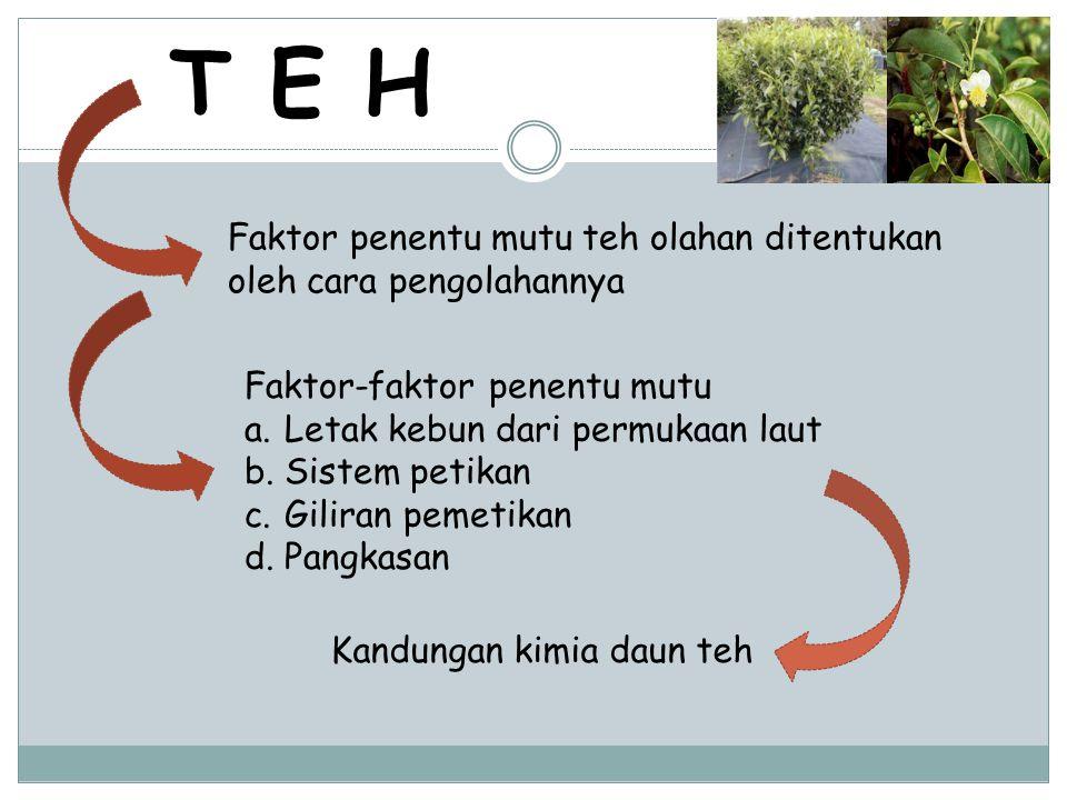 T E H Faktor-faktor penentu mutu a.Letak kebun dari permukaan laut b.Sistem petikan c.Giliran pemetikan d.Pangkasan Faktor penentu mutu teh olahan dit