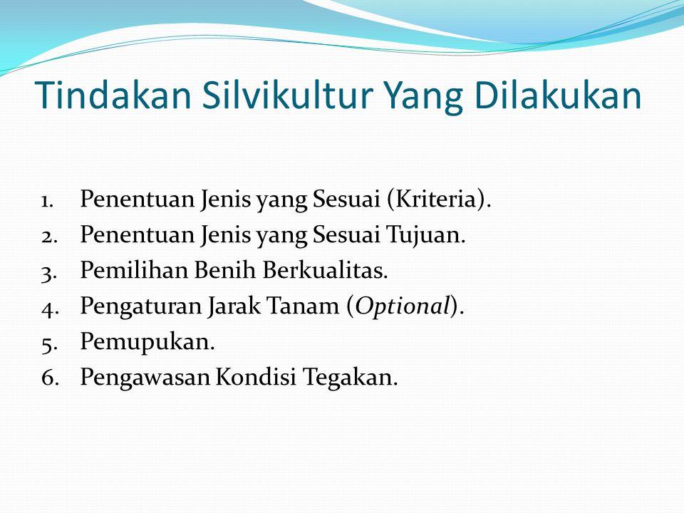Tindakan Silvikultur Yang Dilakukan 1. Penentuan Jenis yang Sesuai (Kriteria). 2. Penentuan Jenis yang Sesuai Tujuan. 3. Pemilihan Benih Berkualitas.