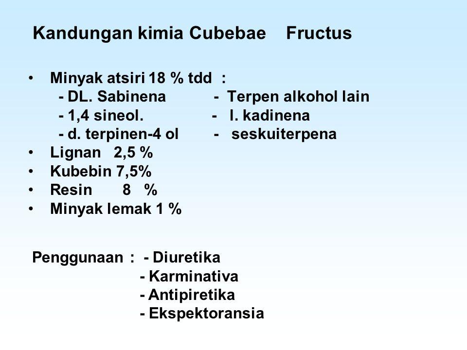 Kandungan kimia Cubebae Fructus Minyak atsiri 18 % tdd : - DL. Sabinena - Terpen alkohol lain - 1,4 sineol. - l. kadinena - d. terpinen-4 ol - seskuit