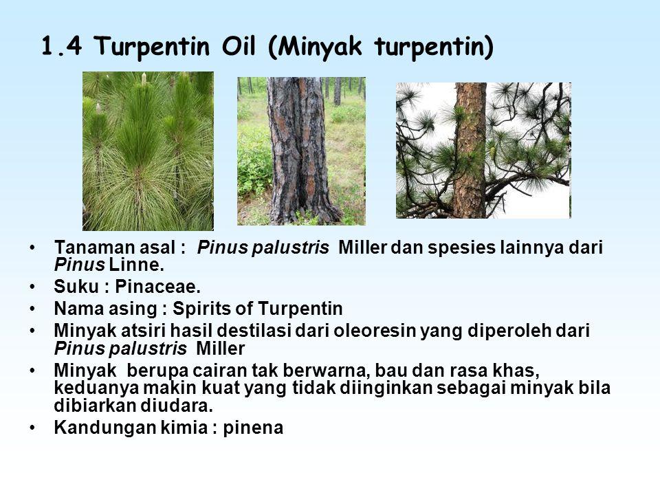 1.4 Turpentin Oil (Minyak turpentin) Tanaman asal : Pinus palustris Miller dan spesies lainnya dari Pinus Linne. Suku : Pinaceae. Nama asing : Spirits