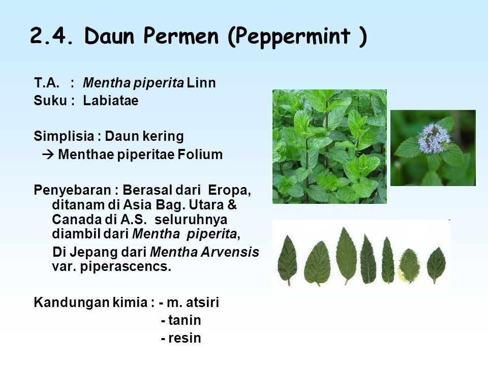 2.4. Daun Permen (Peppermint ) T.A. : Mentha piperita Linn Suku : Labiatae Simplisia : Daun kering  Menthae piperitae Folium Penyebaran : Berasal dar