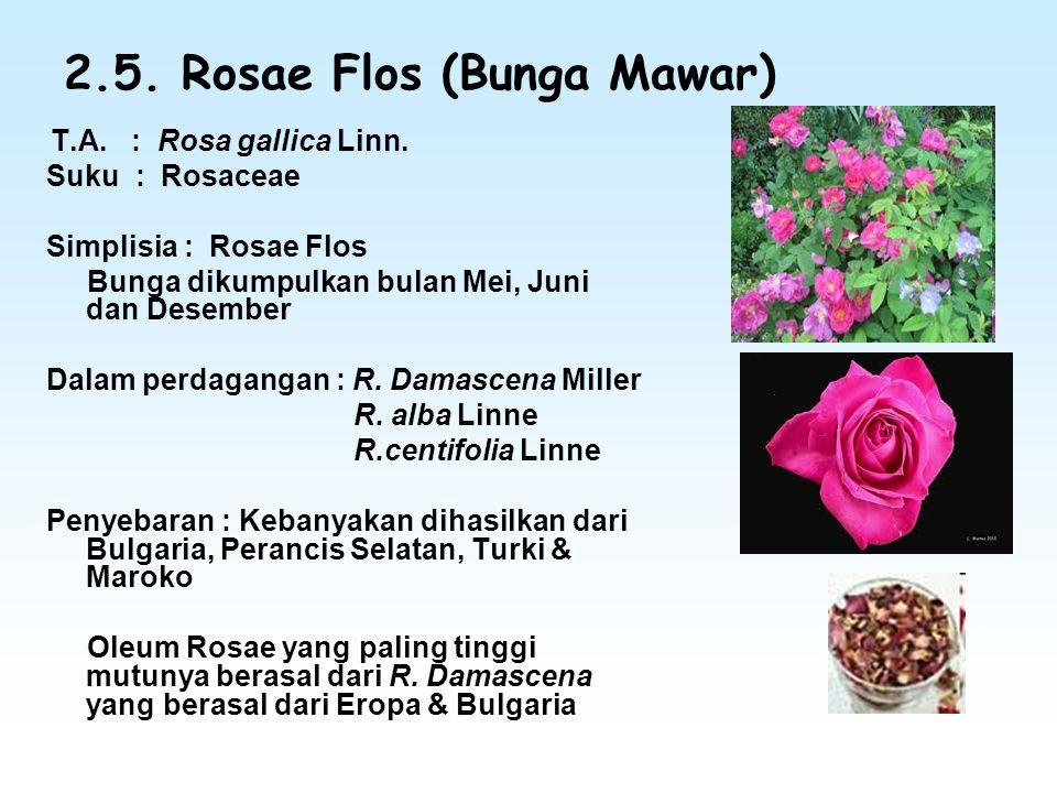 2.5. Rosae Flos (Bunga Mawar) T.A. : Rosa gallica Linn. Suku : Rosaceae Simplisia : Rosae Flos Bunga dikumpulkan bulan Mei, Juni dan Desember Dalam pe