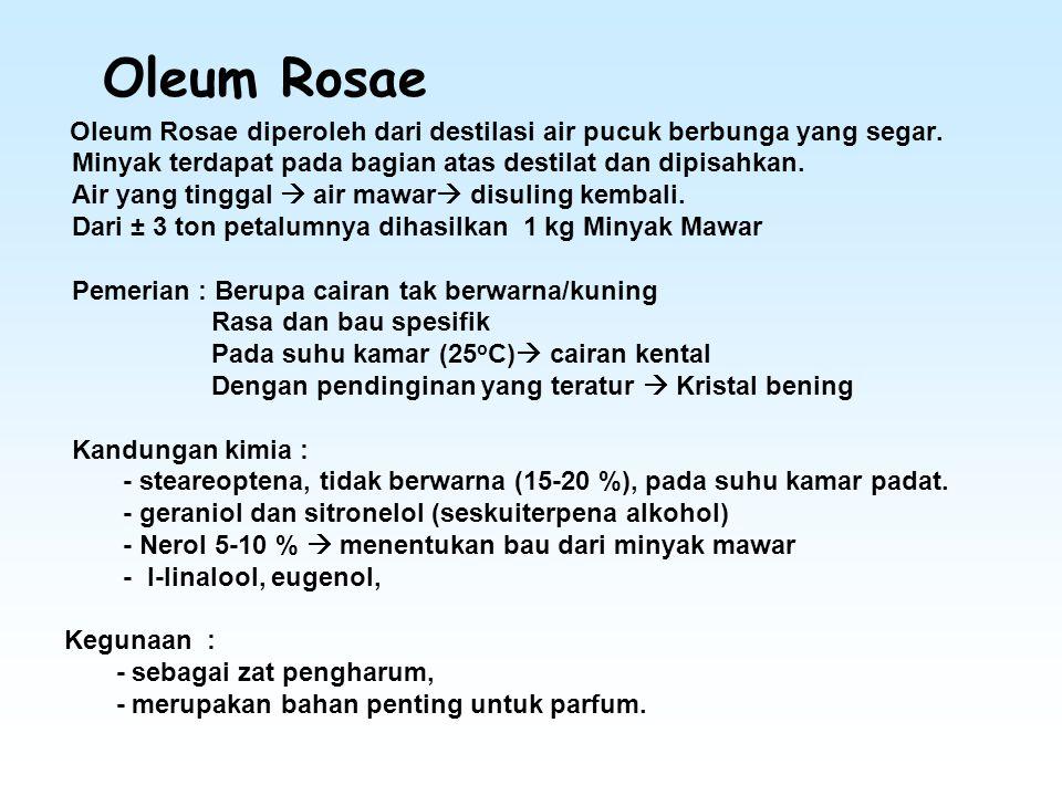 Oleum Rosae Oleum Rosae diperoleh dari destilasi air pucuk berbunga yang segar. Minyak terdapat pada bagian atas destilat dan dipisahkan. Air yang tin