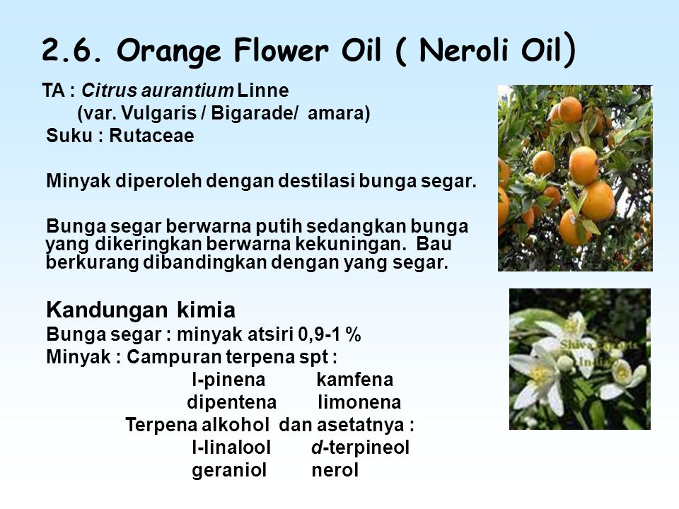 2.6.Orange Flower Oil ( Neroli Oil ) TA : Citrus aurantium Linne (var.