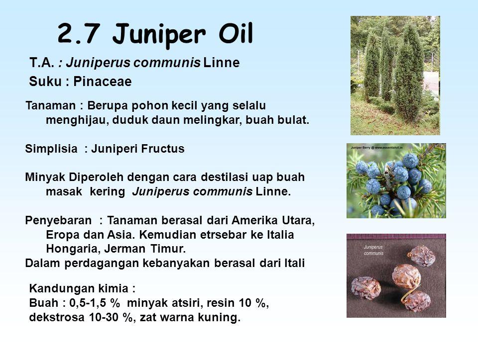 2.7 Juniper Oil T.A. : Juniperus communis Linne Suku : Pinaceae Tanaman : Berupa pohon kecil yang selalu menghijau, duduk daun melingkar, buah bulat.