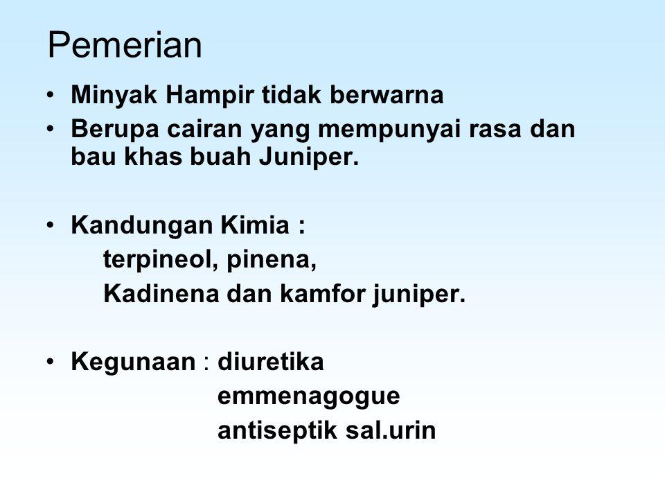 Pemerian Minyak Hampir tidak berwarna Berupa cairan yang mempunyai rasa dan bau khas buah Juniper. Kandungan Kimia : terpineol, pinena, Kadinena dan k