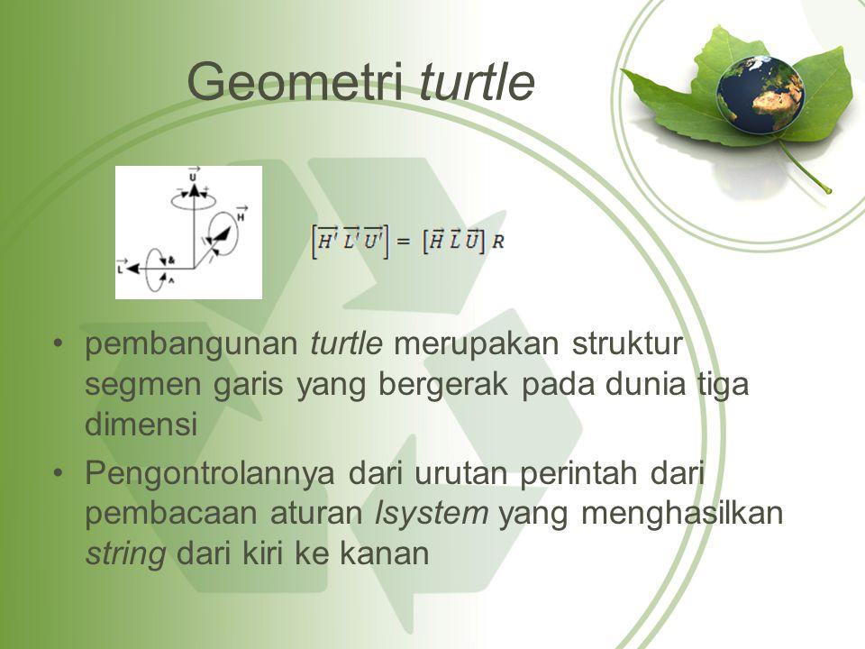Geometri turtle pembangunan turtle merupakan struktur segmen garis yang bergerak pada dunia tiga dimensi Pengontrolannya dari urutan perintah dari pembacaan aturan lsystem yang menghasilkan string dari kiri ke kanan