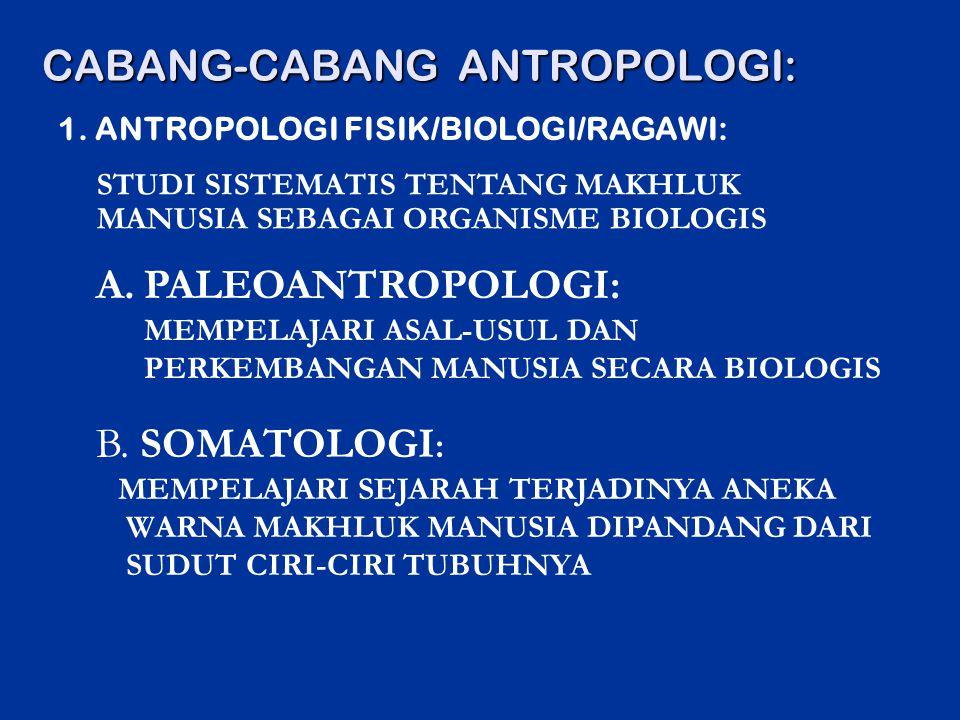 CABANG-CABANG ANTROPOLOGI: A.PALEOANTROPOLOGI: MEMPELAJARI ASAL-USUL DAN PERKEMBANGAN MANUSIA SECARA BIOLOGIS 1. ANTROPOLOGI FISIK/BIOLOGI/RAGAWI: B.