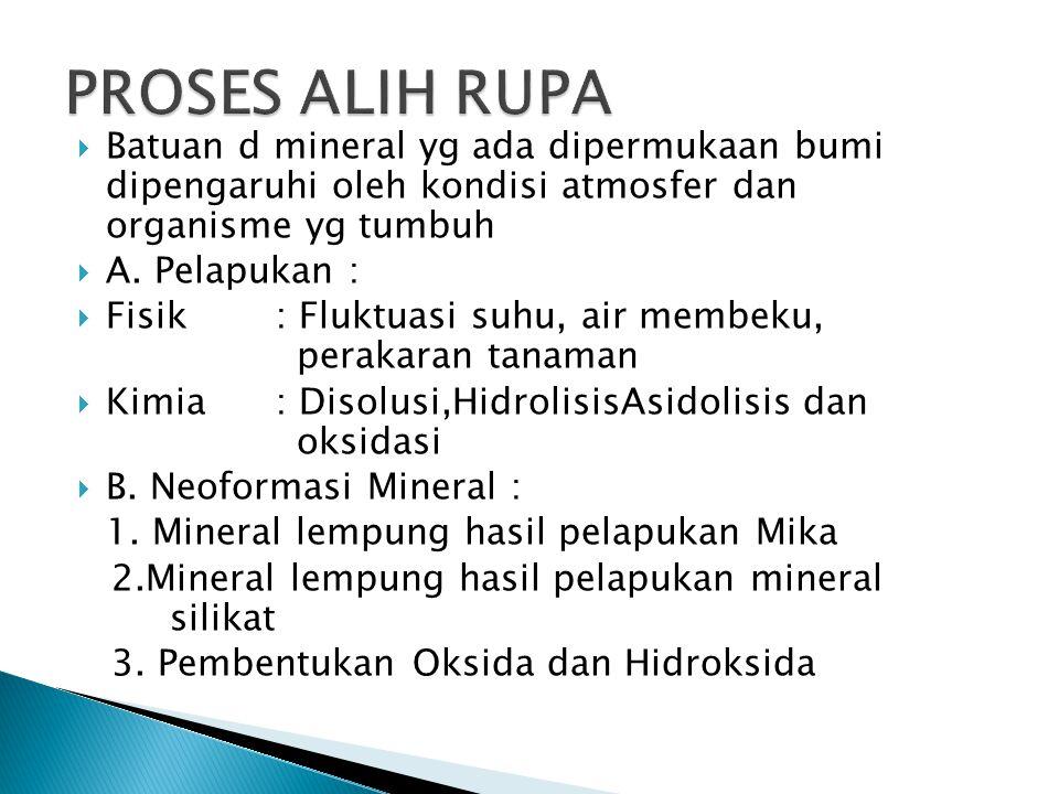  Batuan d mineral yg ada dipermukaan bumi dipengaruhi oleh kondisi atmosfer dan organisme yg tumbuh  A.