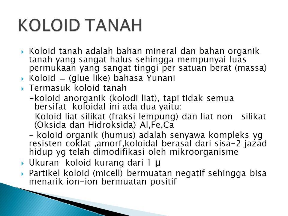  Koloid tanah adalah bahan mineral dan bahan organik tanah yang sangat halus sehingga mempunyai luas permukaan yang sangat tinggi per satuan berat (massa)  Koloid = (glue like) bahasa Yunani  Termasuk koloid tanah -koloid anorganik (kolodi liat), tapi tidak semua bersifat koloidal ini ada dua yaitu: Koloid liat silikat (fraksi lempung) dan liat non silikat (Oksida dan Hidroksida) Al,Fe,Ca - koloid organik (humus) adalah senyawa kompleks yg resisten coklat,amorf,koloidal berasal dari sisa-2 jazad hidup yg telah dimodifikasi oleh mikroorganisme  Ukuran koloid kurang dari 1 μ  Partikel koloid (micell) bermuatan negatif sehingga bisa menarik ion-ion bermuatan positif