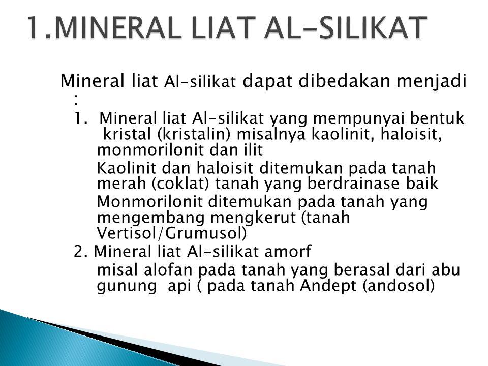 Mineral liat Al-silikat dapat dibedakan menjadi : 1. Mineral liat Al-silikat yang mempunyai bentuk kristal (kristalin) misalnya kaolinit, haloisit, mo
