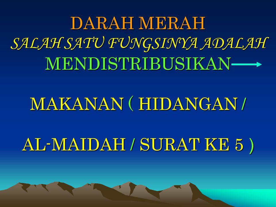 DARAH MERAH SALAH SATU FUNGSINYA ADALAH MENDISTRIBUSIKAN MAKANAN ( HIDANGAN / AL-MAIDAH / SURAT KE 5 )