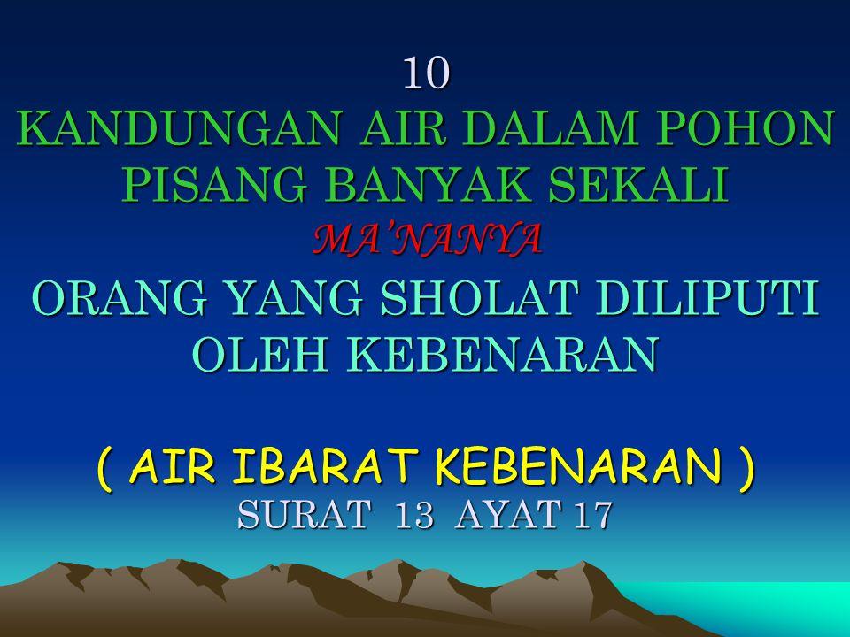 10 KANDUNGAN AIR DALAM POHON PISANG BANYAK SEKALI MA'NANYA ORANG YANG SHOLAT DILIPUTI OLEH KEBENARAN ( AIR IBARAT KEBENARAN ) SURAT 13 AYAT 17