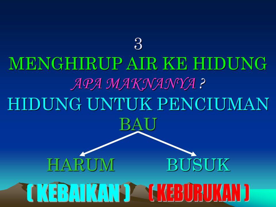 3 MENGHIRUP AIR KE HIDUNG APA MAKNANYA ? HIDUNG UNTUK PENCIUMAN BAU HARUM BUSUK