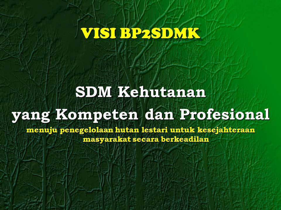 SDM Kehutanan yang Kompeten dan Profesional menuju penegelolaan hutan lestari untuk kesejahteraan masyarakat secara berkeadilan VISI BP2SDMK