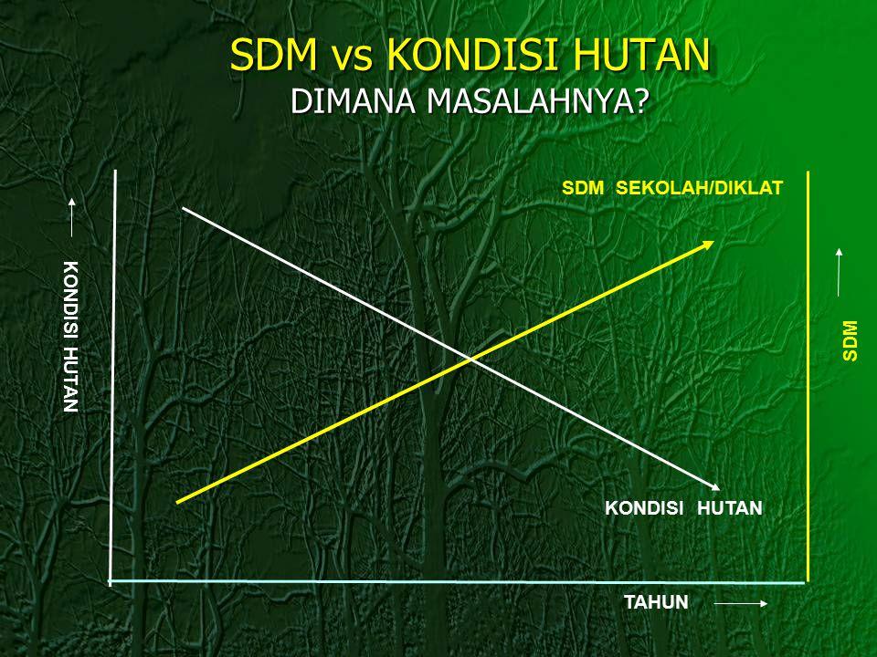SDM vs KONDISI HUTAN DIMANA MASALAHNYA? TAHUN SDM SEKOLAH/DIKLAT KONDISI HUTAN SDM