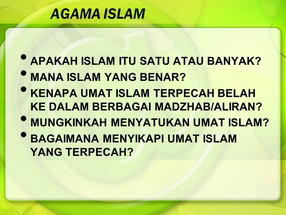 AGAMA ISLAM APAKAH ISLAM ITU SATU ATAU BANYAK? MANA ISLAM YANG BENAR? KENAPA UMAT ISLAM TERPECAH BELAH KE DALAM BERBAGAI MADZHAB/ALIRAN? MUNGKINKAH ME