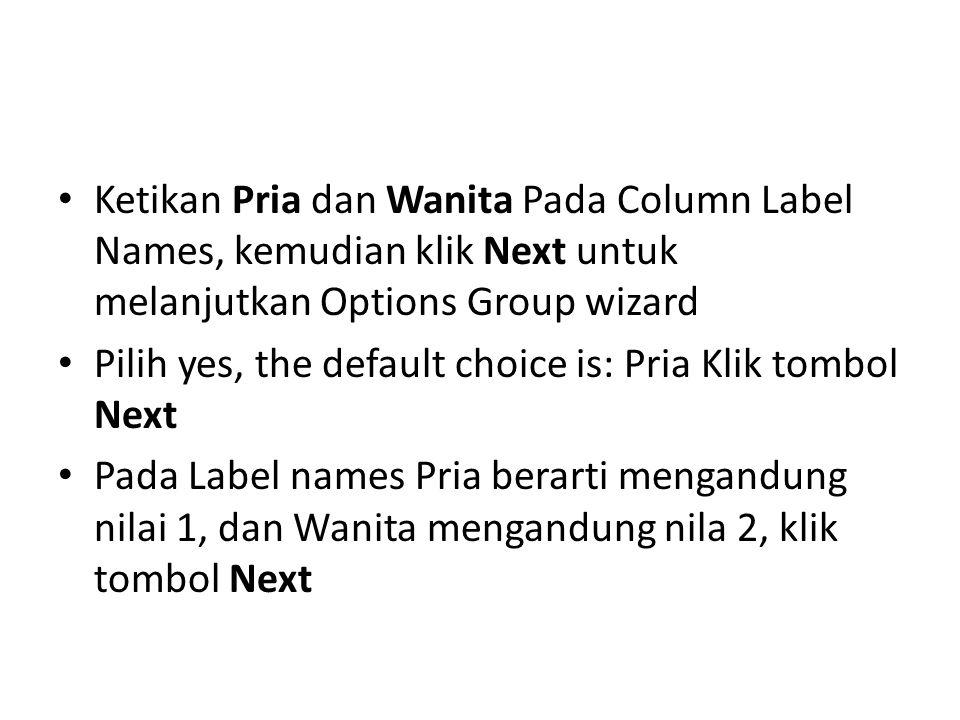 Ketikan Pria dan Wanita Pada Column Label Names, kemudian klik Next untuk melanjutkan Options Group wizard Pilih yes, the default choice is: Pria Klik