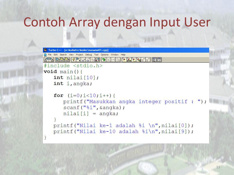 Contoh Array dengan Input User 13