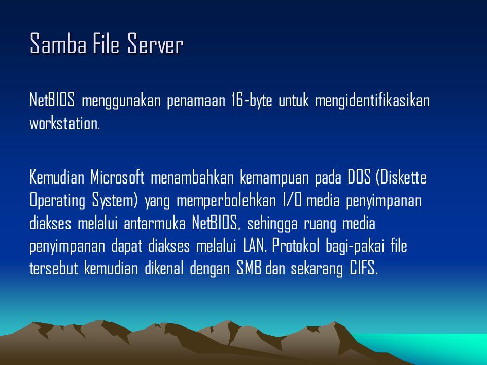Samba File Server NetBIOS menggunakan penamaan 16-byte untuk mengidentifikasikan workstation. Kemudian Microsoft menambahkan kemampuan pada DOS (Diske