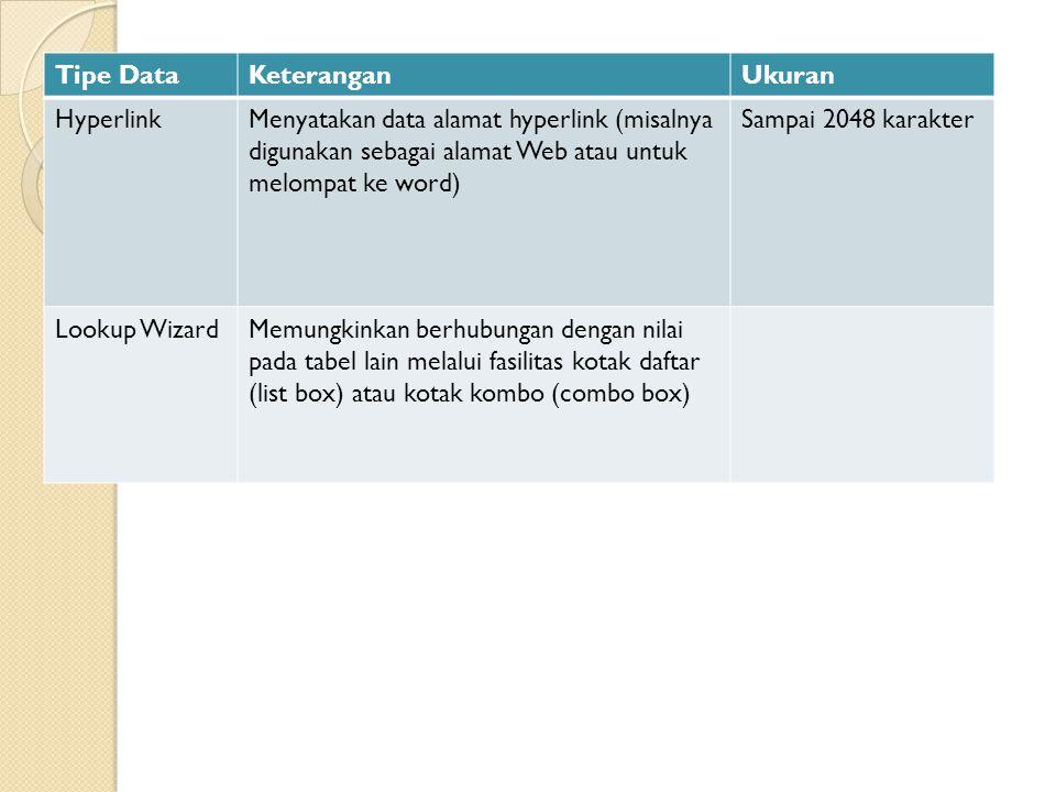 Tipe DataKeteranganUkuran HyperlinkMenyatakan data alamat hyperlink (misalnya digunakan sebagai alamat Web atau untuk melompat ke word) Sampai 2048 ka