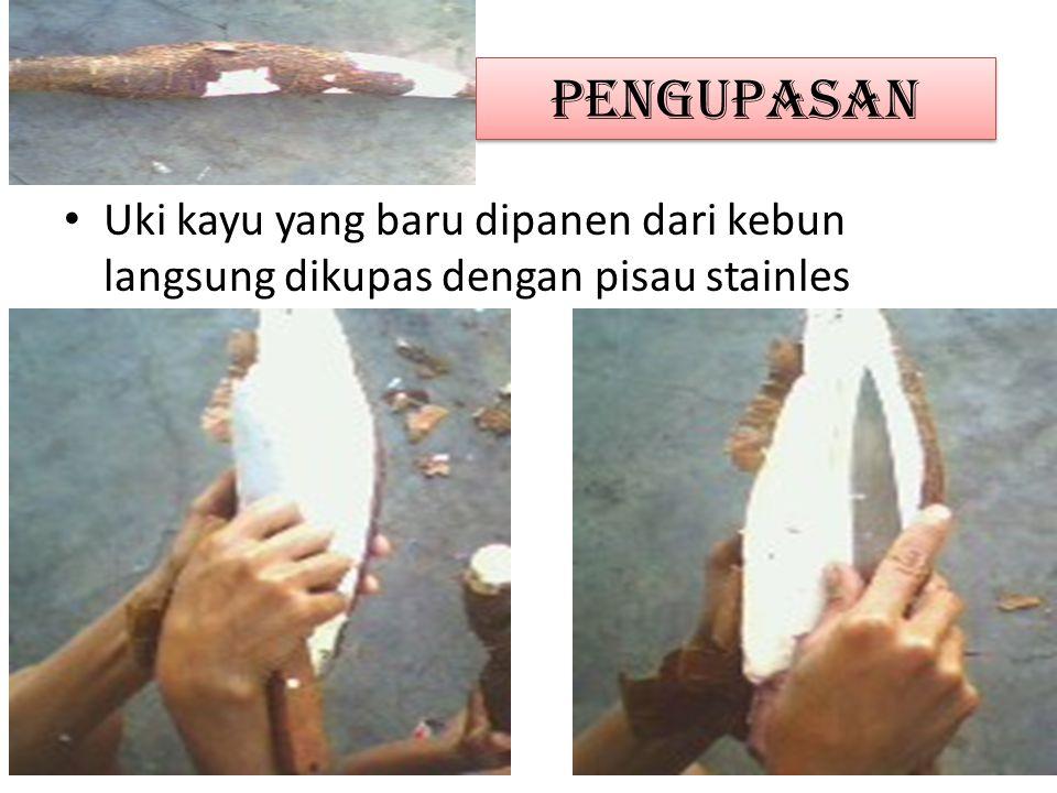 Pengupasan Uki kayu yang baru dipanen dari kebun langsung dikupas dengan pisau stainles