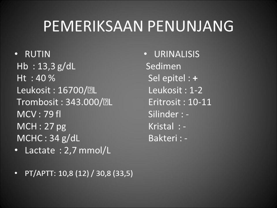 PEMERIKSAAN PENUNJANG RUTIN Hb : 13,3 g/dL Ht : 40 % Leukosit : 16700/  L Trombosit : 343.000/  L MCV : 79 fl MCH : 27 pg MCHC : 34 g/dL Lactate : 2