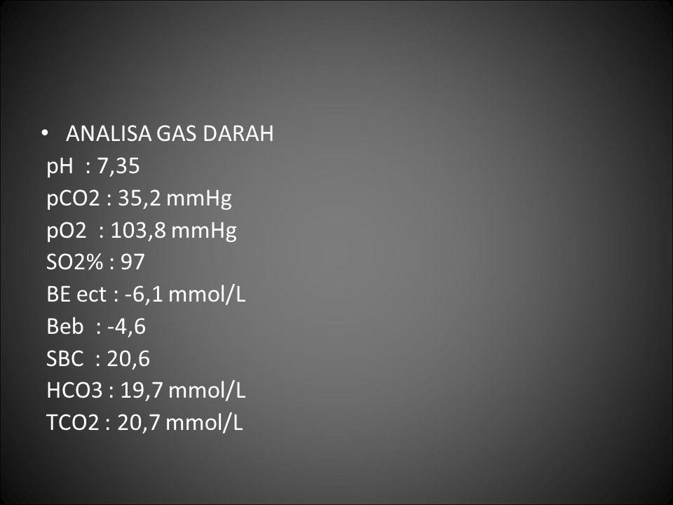 ANALISA GAS DARAH pH : 7,35 pCO2 : 35,2 mmHg pO2 : 103,8 mmHg SO2% : 97 BE ect : -6,1 mmol/L Beb : -4,6 SBC : 20,6 HCO3 : 19,7 mmol/L TCO2 : 20,7 mmol
