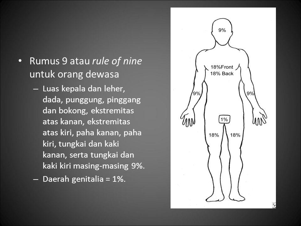 Rumus 9 atau rule of nine untuk orang dewasa – Luas kepala dan leher, dada, punggung, pinggang dan bokong, ekstremitas atas kanan, ekstremitas atas ki