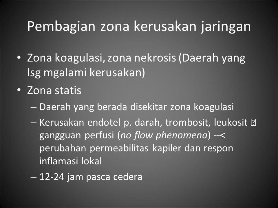 Pembagian zona kerusakan jaringan Zona koagulasi, zona nekrosis (Daerah yang lsg mgalami kerusakan) Zona statis – Daerah yang berada disekitar zona ko