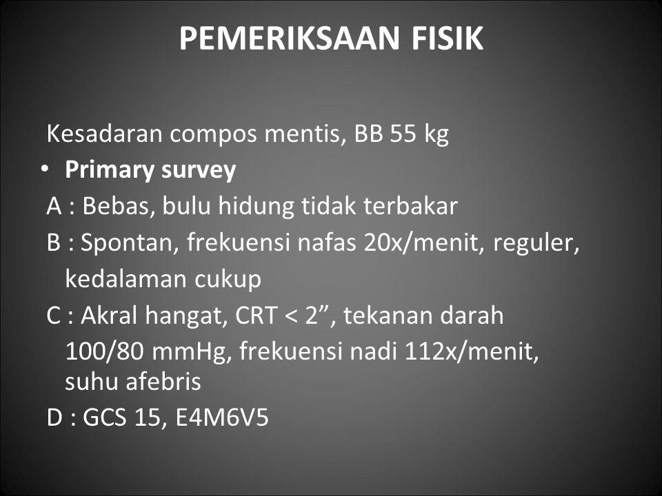 PEMERIKSAAN FISIK Kesadaran compos mentis, BB 55 kg Primary survey A : Bebas, bulu hidung tidak terbakar B : Spontan, frekuensi nafas 20x/menit, regul