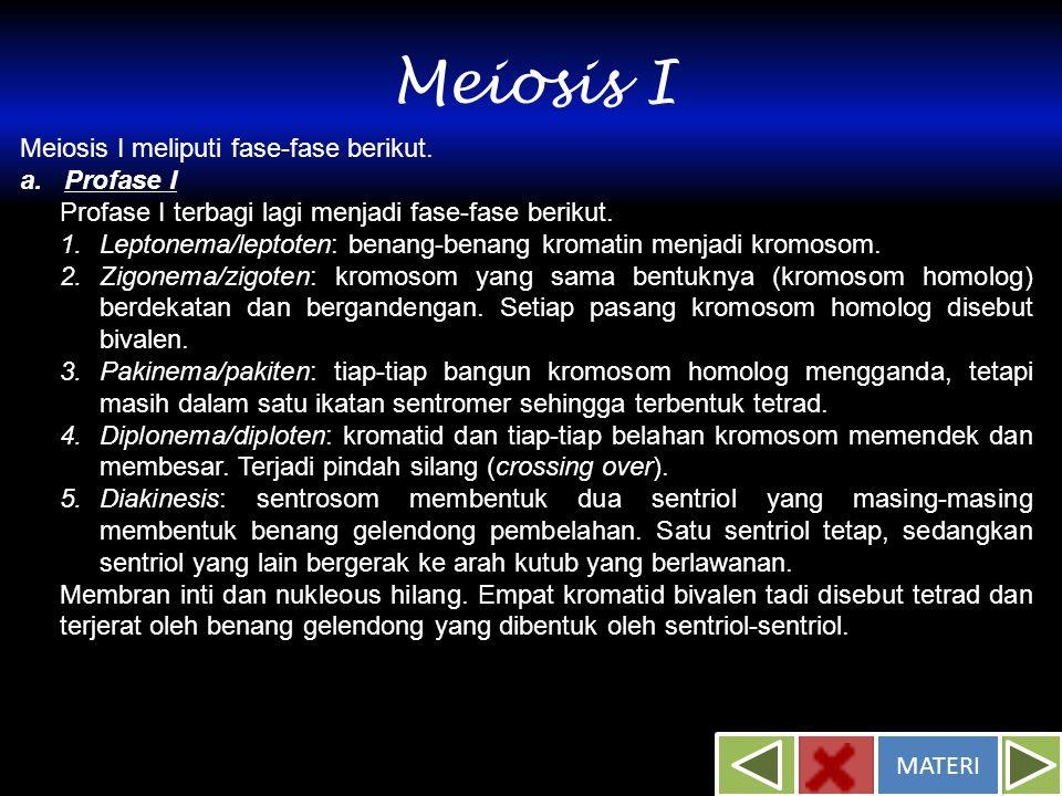 Meiosis I Meiosis I meliputi fase-fase berikut. a. Profase I Profase I terbagi lagi menjadi fase-fase berikut. 1.Leptonema/leptoten: benang-benang kro