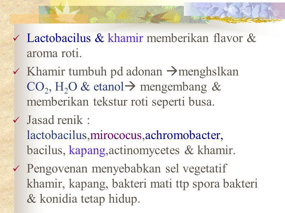 Lactobacilus & khamir memberikan flavor & aroma roti. Khamir tumbuh pd adonan  menghslkan CO 2, H 2 O & etanol  mengembang & memberikan tekstur roti