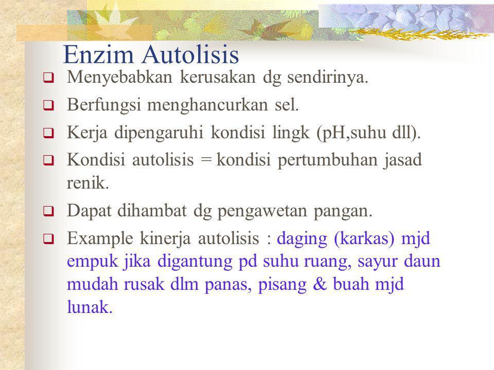 Enzim Autolisis  Menyebabkan kerusakan dg sendirinya.  Berfungsi menghancurkan sel.  Kerja dipengaruhi kondisi lingk (pH,suhu dll).  Kondisi autol